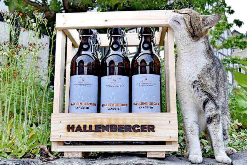 Eine Katze reibt ihr Kinn an einer Kiste mit 6 Einliterflaschen Hallenberger Bier