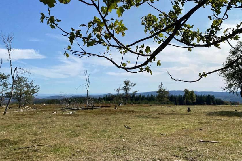 Aussicht vom Kahlen Asten über die Heidewiese auf die Hügel des Sauerlandes