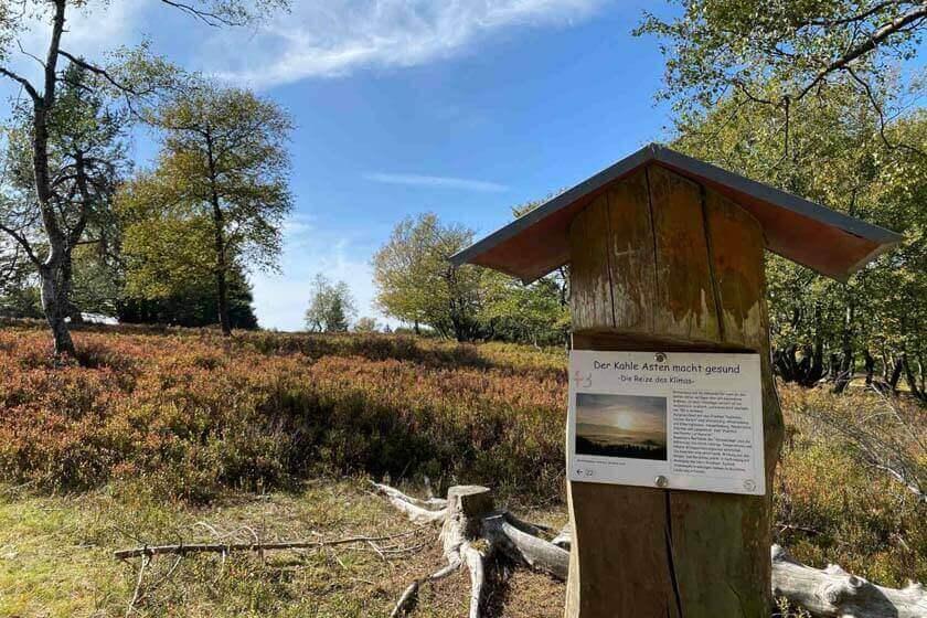 Informationsstation zum Thema Klima der Heidelandschaft auf dem Kahlen Asten