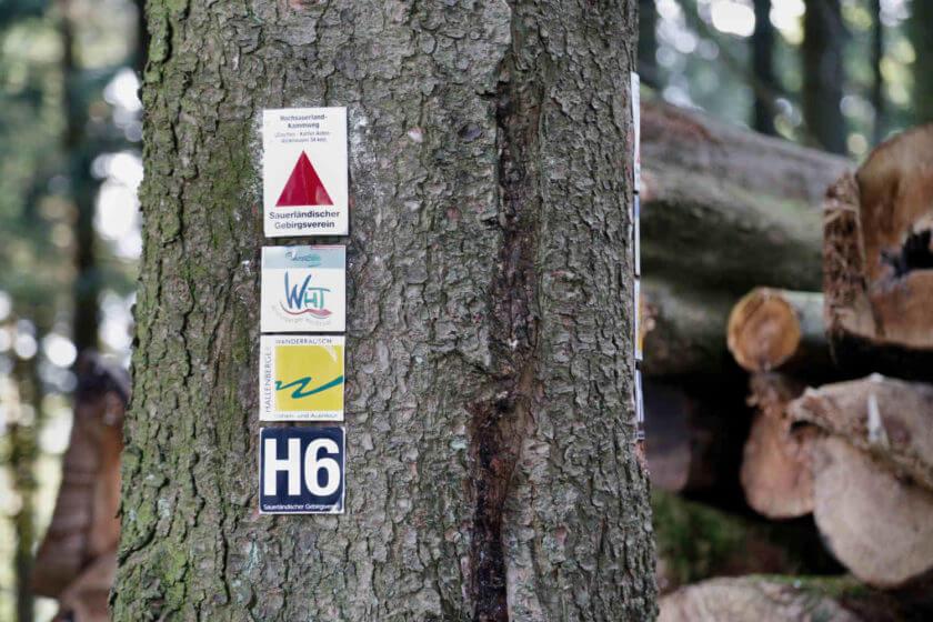 Ein Baumstamm mit Wanderschildern auf Blech