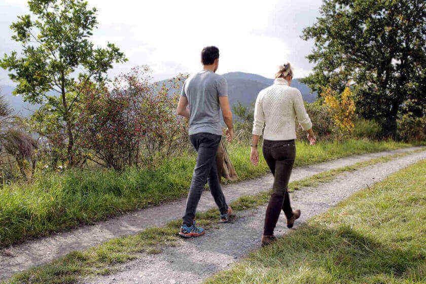 Ein Paar spaziert bei sommerlichem Wetter über einen Feldweg mit Büschen am Wegesrand