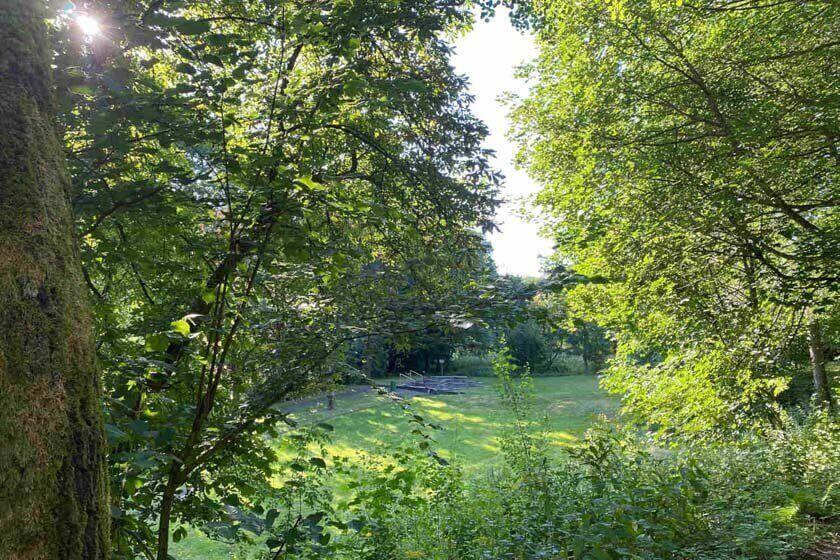 Naturtretbecken beim Naturweg Liesetal durch Bäume und Sträucher fotografiert