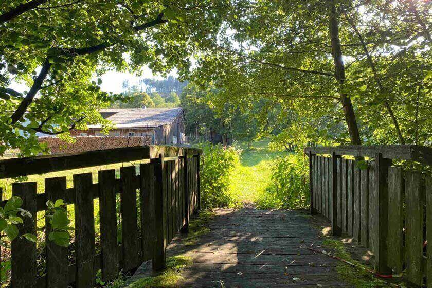 Kleine Holzbrücke am Naturweg Liesetal