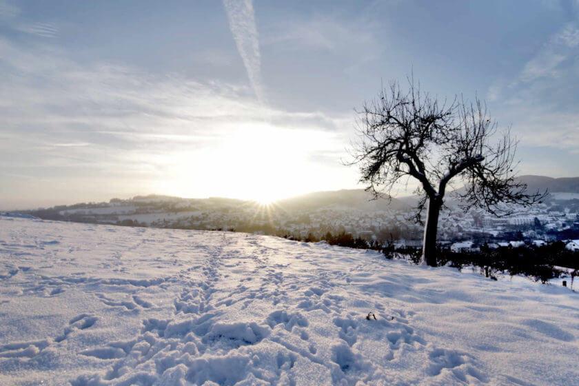 Eine hellblau-weiße Schneelandschaft mit tiefstehender Sonne